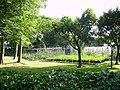 Kitchen Garden Poulton - geograph.org.uk - 187727.jpg