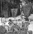 Koši, Robidišče 1951.jpg