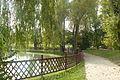 Komorniki, park (4).JPG