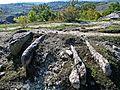 Kovil necropolis BG.jpg