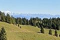 La Dôle - panoramio (25).jpg