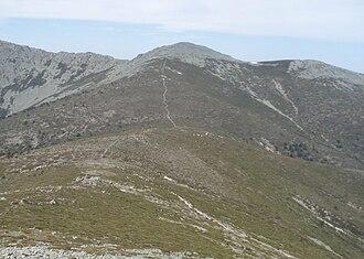 La Pinareja - La Pinareja from the Montón de Trigo