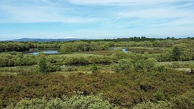 Lagoa de Cospeito (mirador principal) 01.jpg