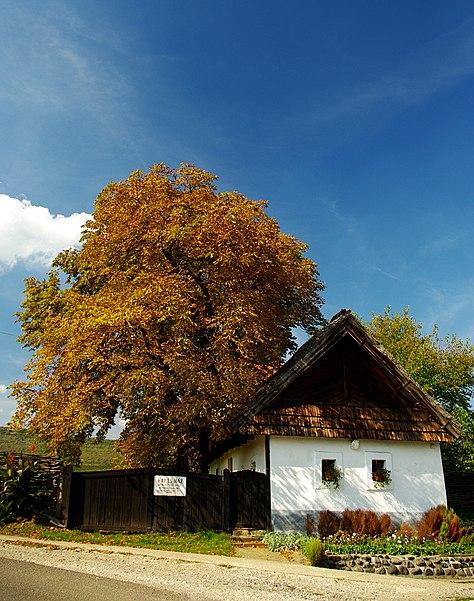 Traditional residential house (Kapásház) in Abasár, Hungary. Author: jotti, CC-BY-SA 2.5.