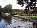 Lake, Coronation Park, Ormskirk - DSC09256.JPG
