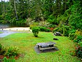 Lake Marie day use area and swimming beach in Umpqua Lighthouse State Park.jpg
