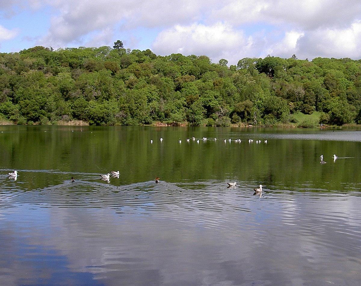 Lake Ralphine - Wikipedia