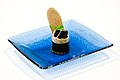 Lakserulle med spinat. Geleret laks omviklet med japansk nori-tang og en kerne af frisk kogt spinat. Pyntet med sort kaviar, rodlog, korvel og en lille skive handlavet knaekbrod med kommensmag.Tillagat av Kim Palhus, Ny Nordisk Mat (1).jpg
