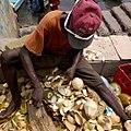 Lamu coconut water.jpg