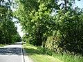 Landschaftsschutzgebiet Wiedebrocksheide Gesmold Melle Datei 5.jpg