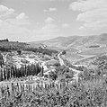 Landschap met bergen en bomen, Bestanddeelnr 255-2599.jpg