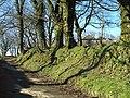 Lane past Lower Trevivian - geograph.org.uk - 731262.jpg