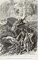 Le dernier des Mohicans - Cooper James - Andriolli - Huyot - p95.jpg