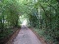 Leafy lane, Lenham, Kent - geograph.org.uk - 62730.jpg