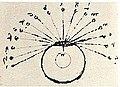 Leonardo da Vinci- Gözün merkezi bir çizgisi vardır ve bu çizgiden göze ulaşan herşey belirgin bir biçimde görülebilir..jpg