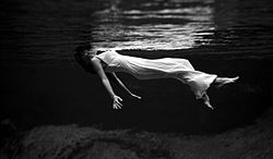 Letni pod vodou (underwater summer photo).jpg