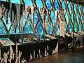 Lexposition Tarzan ( musée du Quai Branly) (3871525625).jpg
