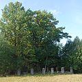 Libusza , cmentarz wojenny nr 101, widok ogólny.jpg