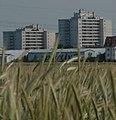 Limburgerhof, Germany - panoramio.jpg