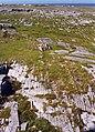 Limestone Karst - geograph.org.uk - 12406.jpg