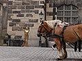 Living statues in Dresden (324).jpg