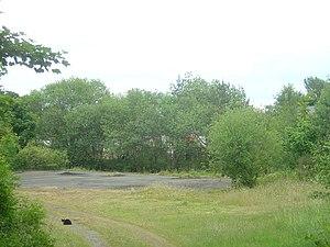 Llanymynech - Image: Llanymynech station yard geograph.org.uk 924742