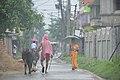 Local Lane - Serampore - Hooghly 2017-07-06 0541.JPG