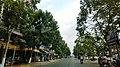 Long Châu, tx. Tân Châu, An Giang, Vietnam - panoramio (3).jpg
