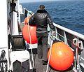 Longline buoy.jpg