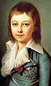 Louis Charles of France6.jpg
