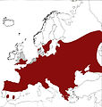 Lucanus cervus areal.jpg