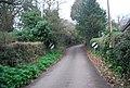 Luccombe Lane - geograph.org.uk - 1660444.jpg