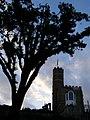 Luttrell's Tower, Calshot - geograph.org.uk - 178731.jpg