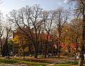 Lviv Na Valah Park SAM 9782 46-101-5008.jpg