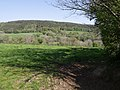 Lyd valley - geograph.org.uk - 431731.jpg