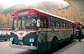 MDC-BUS-No461.jpg