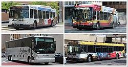 MTA Maryland Bus.jpg