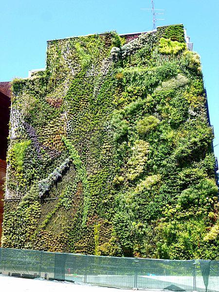 File madrid caixaforum jard n vertical wikimedia commons - Jardin vertical caixaforum ...