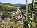 Maisprach vineyard.jpg