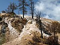 Mammoth Springs, Yellowstone NP - panoramio.jpg
