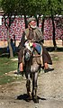 Man on horse, Afghanistan.jpg