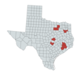 Map of coronavirus pandemic in Texas as of March 13, 2020.png