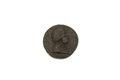 Medalj av stål - Skoklosters slott - 92228.tif