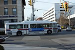 Mineola Bl Old Country Rd td 04.jpg