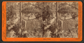Mirror view. Yosemite Valley, Mariposa County, Cal, by Watkins, Carleton E., 1829-1916.png