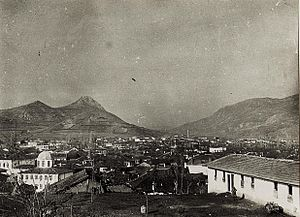 Mitrovica, Kosovo - Panoramic view of Mitrovica during World War I.