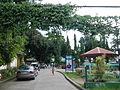 MoisesEscuetaParkTiaong,Quezonjf1409 04.JPG