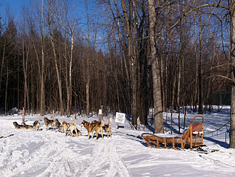 Château Montebello - The resort grounds includes a number of shared use paths for hiking, cross-country skiing, and dogsledding.