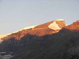 Mount Kitchener - Mount Kitchener at dawn from the Icefields Parkway