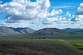 Muskox on the Tundra (9513684472).jpg